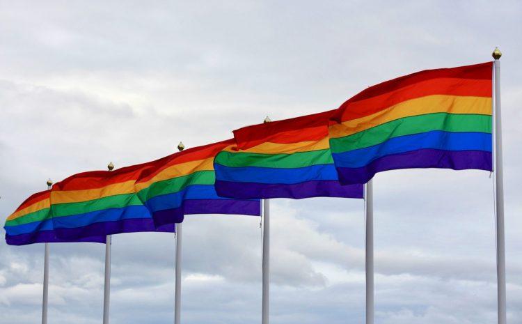 聯合國、歐洲委員會、大使館支持塞爾維亞的 LGBTQI+ 社區
